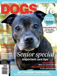 Dogs Life issue Sep/Oct Issue#139