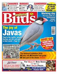 Cage & Aviary Birds issue No. 5921 The Joy Of Javas
