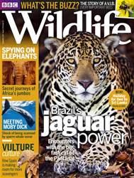BBC Wildlife Magazine issue October 2016