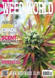 WW 125 issue WW 125