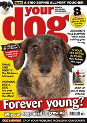 Your Dog Magazine November 2016 issue Your Dog Magazine November 2016