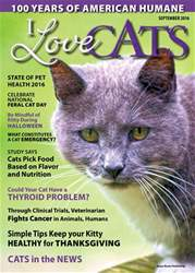 I Love Cats issue September 2016