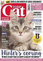 Your Cat Magazine November 2016 issue Your Cat Magazine November 2016