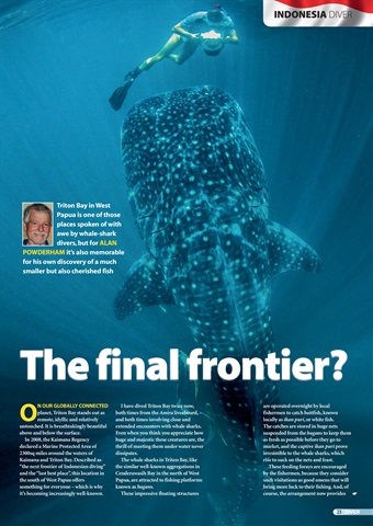 DIVER Preview 23