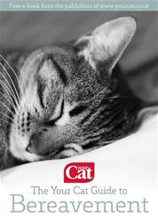 The Your Cat Guide to Bereavement issue The Your Cat Guide to Bereavement