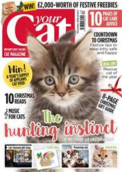 Your Cat Magazine December 2016 issue Your Cat Magazine December 2016
