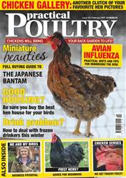 Practical Poultry issue No. 159 Miniature Beauties