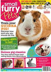 Small Furry Pets issue No. 31 Train Your Guinea Pig!