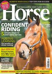 Horse issue Feb-17