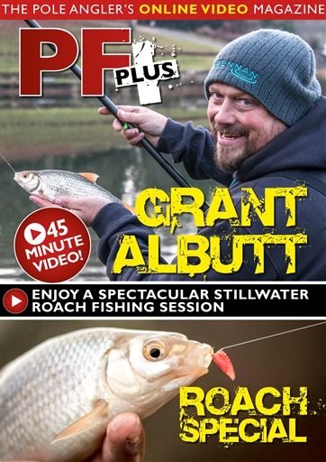 Pole Fishing Plus Preview 1
