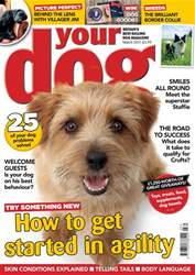 Your Dog issue Your Dog Magazine March 2017