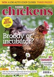 Your Chickens issue Mar-17