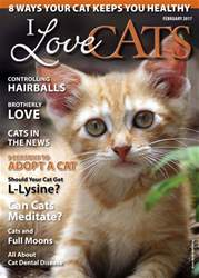 I Love Cats issue February 2017