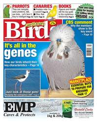 Cage & Aviary Birds issue No. 5944 It's all in the genes