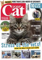 Your Cat issue Your Cat Magazine March 2017