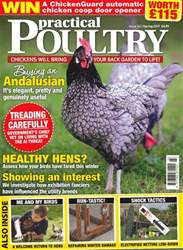 Practical Poultry issue No. 161 Healthy Hens?