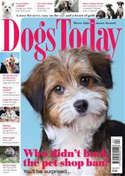 Dogs Today Magazine issue April 2017