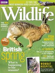 BBC Wildlife Magazine issue April 2017