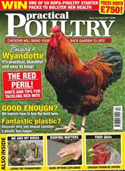 Practical Poultry issue No. 162 The Red Peril!