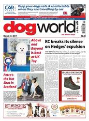 31/03/2017 issue 31/03/2017