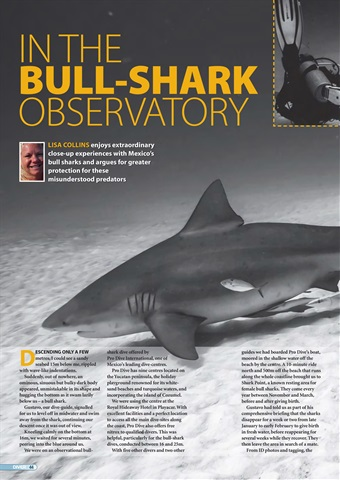 DIVER Preview 44