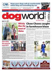Dog World issue 21/04/2017