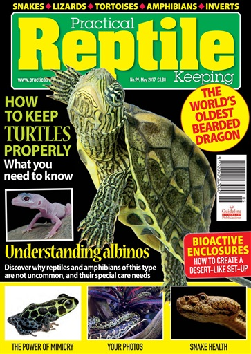 Practical Reptile Keeping Digital Issue