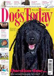 Dogs Today Magazine issue June 2017