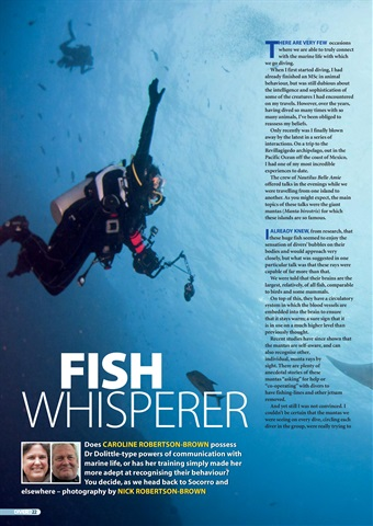 DIVER Preview 22