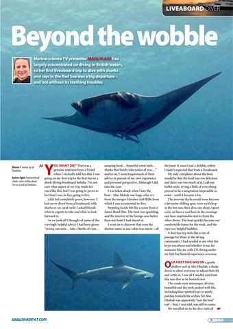 DIVER Preview 7