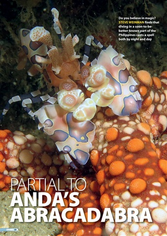 DIVER Preview 64