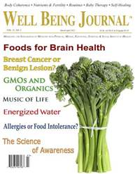 Well Being Journal issue March April 2012