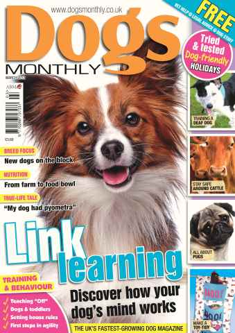 Dogs Monthly issue Dogs Monthly March 2012