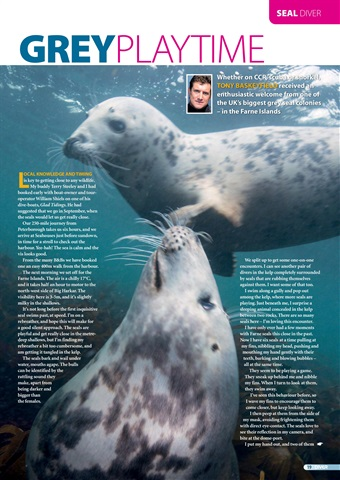 DIVER Preview 19