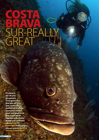 DIVER Preview 26