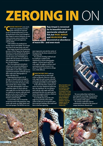 DIVER Preview 80