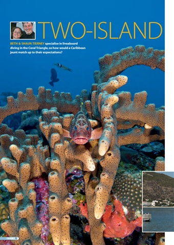DIVER Preview 72