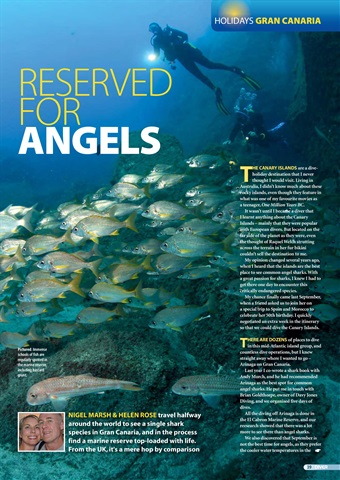 DIVER Preview 39
