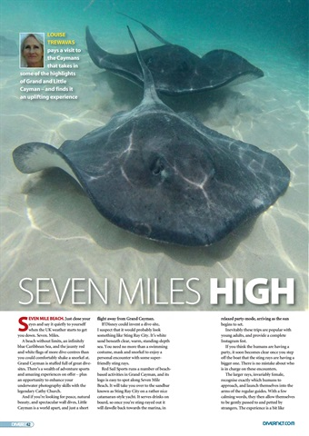 DIVER Preview 42