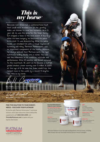 North American Trainer Magazine - horse racing Preview 5