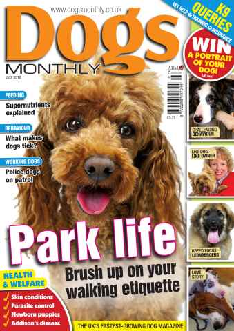 Dogs Monthly issue July 2012