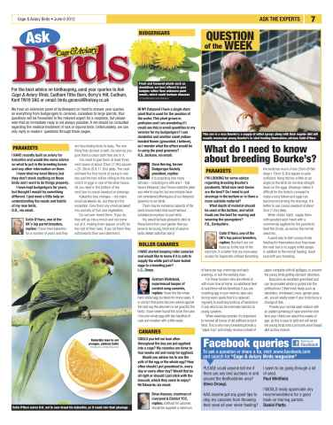 Cage & Aviary Birds Preview 7