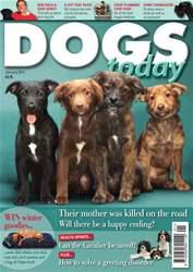 January 2011 issue January 2011