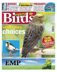 Cage & Aviary Birds issue Cage and Aviary June 27 2012