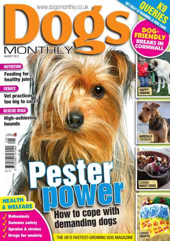 Dogs Monthly issue August 2012