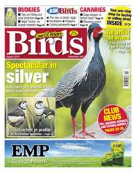 Cage & Aviary Birds issue Cage and Aviary August 8 2012