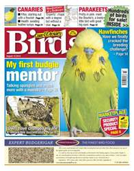 Cage & Aviary Birds issue Cage and Aviary August 15 2012