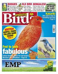 Cage & Aviary Birds issue Cage and Aviary August 29 2012