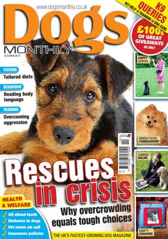 Dogs Monthly issue Dogs Monthly October 2012