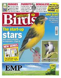 Cage & Aviary Birds issue Cage & Aviary 26 September 2012